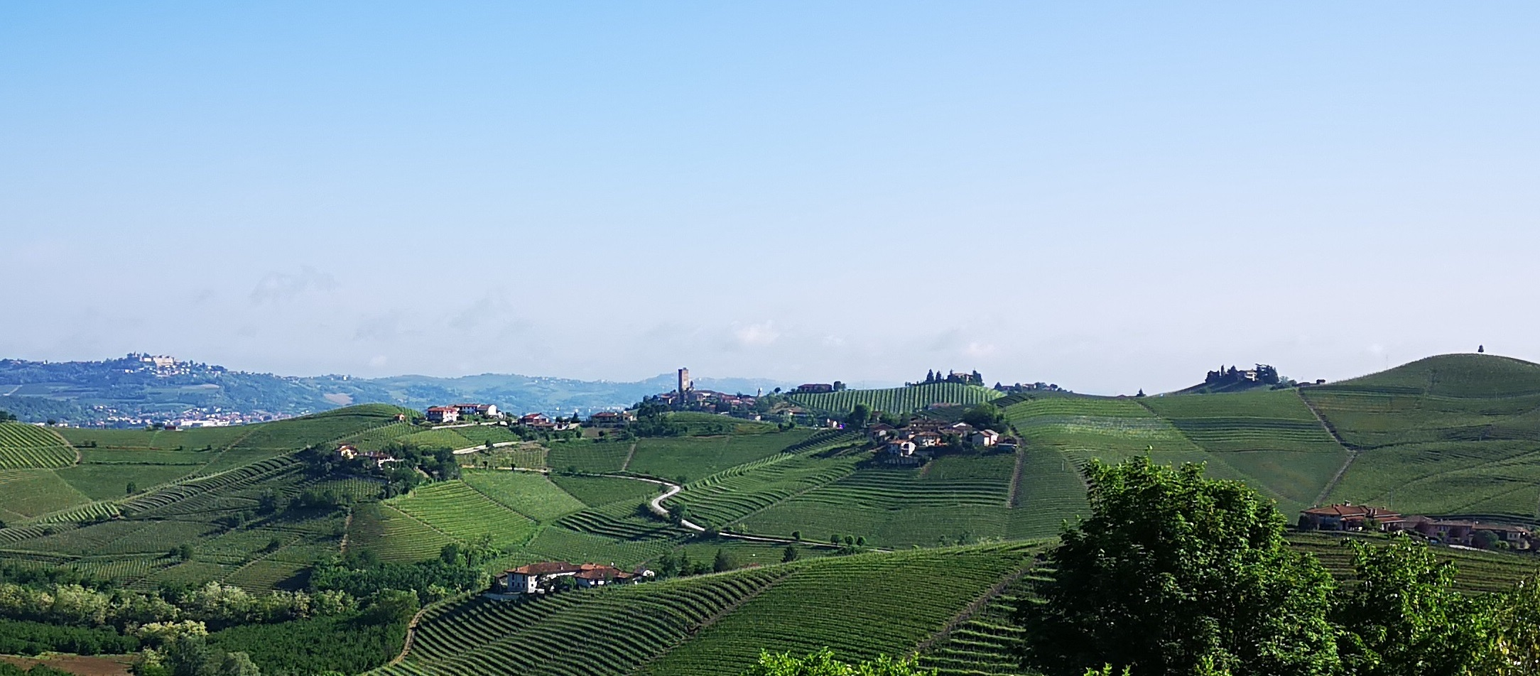 Town of Barbaresco